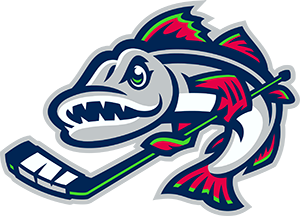 Minnesota Hook Hockey